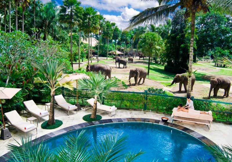 Wisata Taman Gajah Taro Ubud